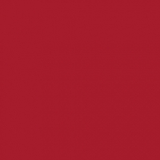 2K Autolack RAL 3031 Orientrot 1 LTR Seidenglanz