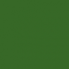 2K Autolack RAL 6010 Grasgrün 1 LTR Seidenglanz