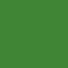 2K Autolack RAL 6017 Maigrün 1 LTR Seidenglanz