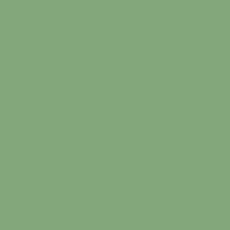 2K Autolack RAL 6021 Blaßgrün 1 LTR Seidenglanz