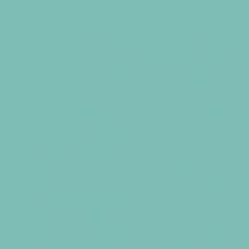 2K Autolack RAL 6034 Pastelltürkis 1 LTR Seidenglanz